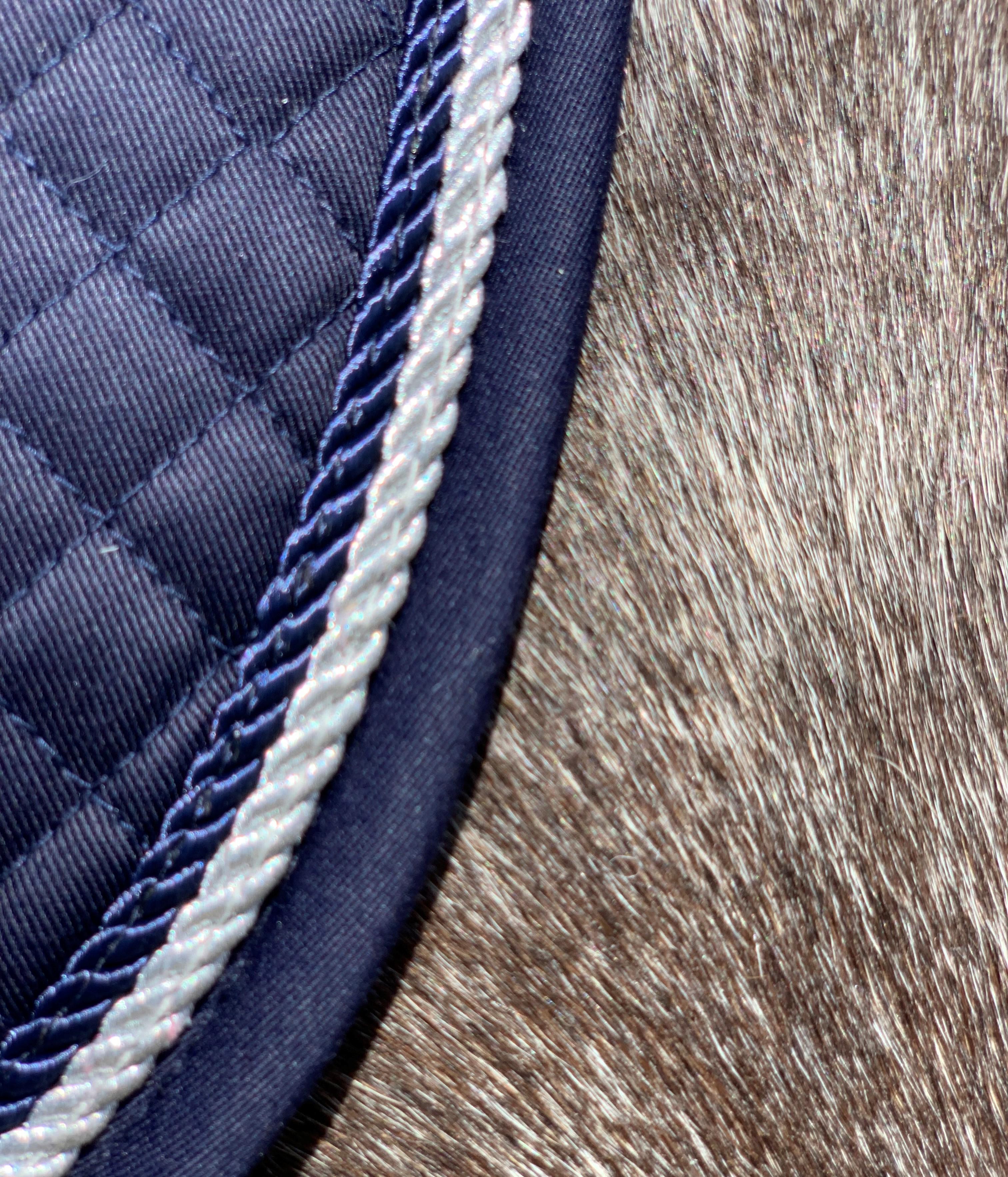 Valleyhorsewear Dressage Saddle Pad-Navy-Navy/Silver rope binding