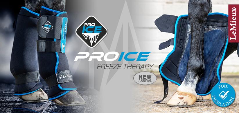LeMieux ProIce Freeze Boot – ValleyHorsewear
